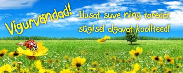 Ilusat suve, Vigurvändad!