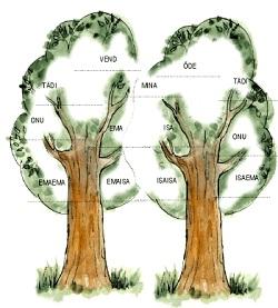 Sugupuu uurimise lühikursus Kostiveres