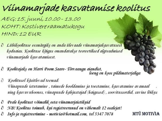 viinamarja koolitus 650