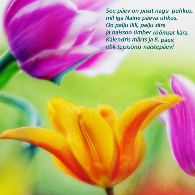 koduka-vaheleht_naistepäev
